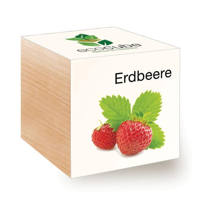 Ecocube Erdbeere - Pflanzen im Holzwürfel
