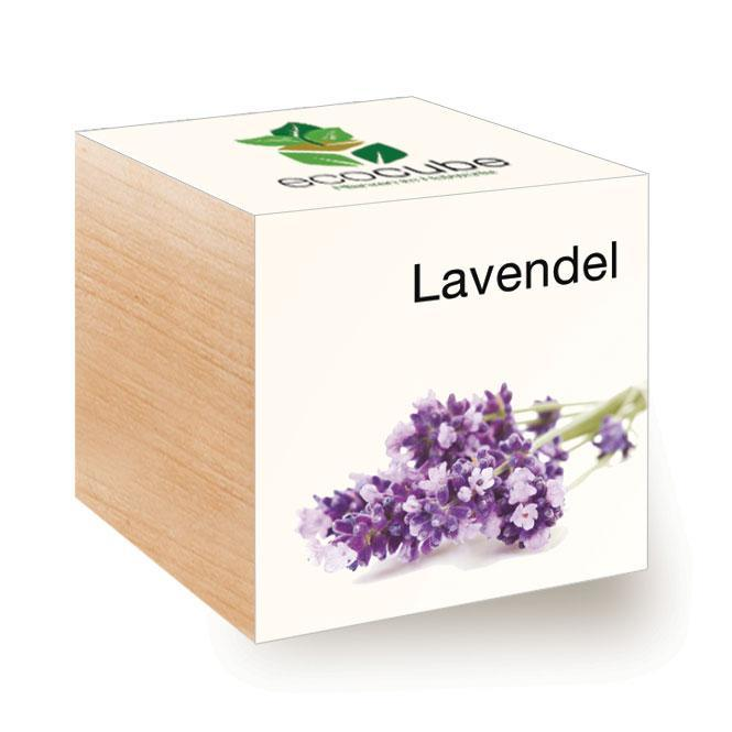 Ecocube Lavendel - Pflanzen im Holzwürfel