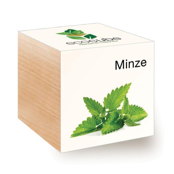 Ecocube Minze - Pflanzen im Holzwürfel