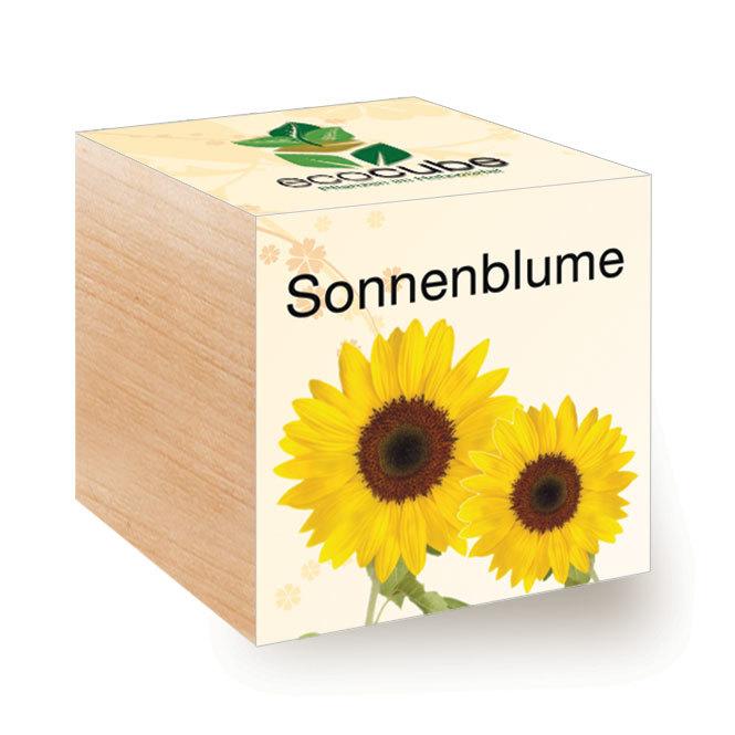 Ecocube Sonnenblume - Pflanzen im Holzwürfel