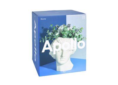 Apollo Vase - Vase