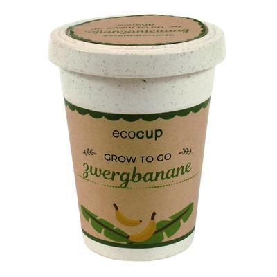 EcoCup Zwergbanane