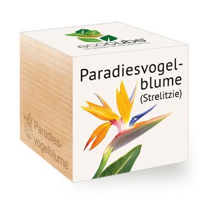 Ecocube Paradiesvogelblume - Pflanzen im Holzwürfel
