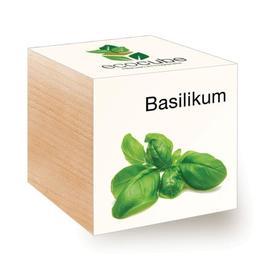 Ecocube Basilikum - Pflanzen im Holzwürfel