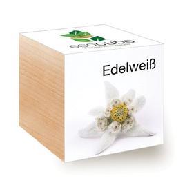 Ecocube Edelweiss - Pflanzen im Holzwürfel