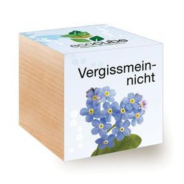 Ecocube Vergissmeinnicht - Pflanzen im Holzwürfel